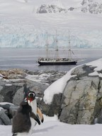 Lord Nelson in the Antarctic